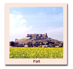 Castle of Rajasthan